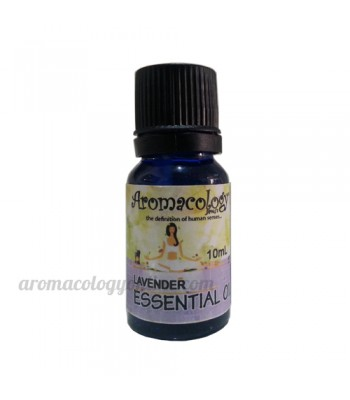 Lavender Essential Oil Concentrate 10ml