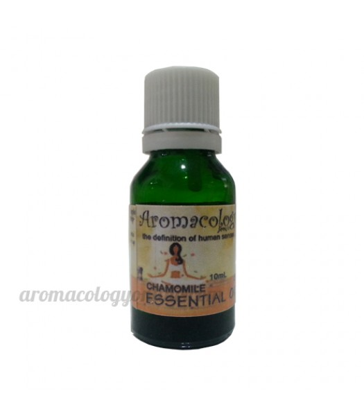 Chamomile Essential Oil Concentrate 10ml