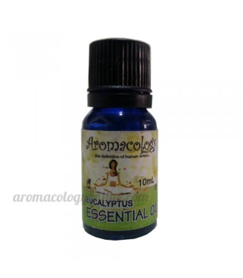 Eucalyptus Essential Oil Concentrate 10ml