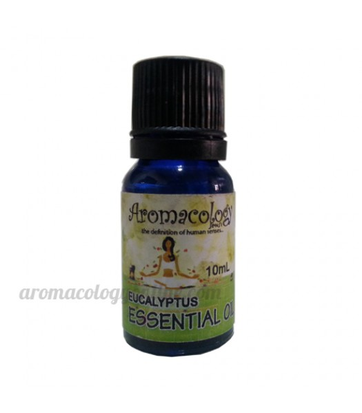 ESSENTIAL OIL-EUCALYPTUS 10ml